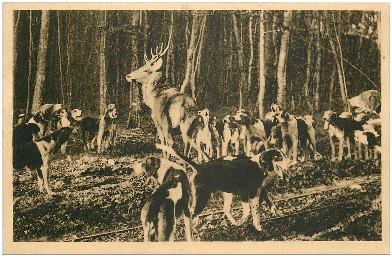 carte postale ancienne 02 VILLERS-COTTERETS. Chasse à Courre. Hallali aux Mazures. Equipage Menier 1938.