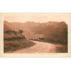 carte postale ancienne 63 LE MONT-DORE. Troupeau de Vaches Route de Besse 1930