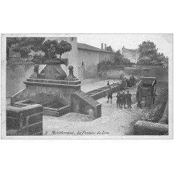 carte postale ancienne 63 MONTFERRAND. La Fontaine du Lion et Laveuses