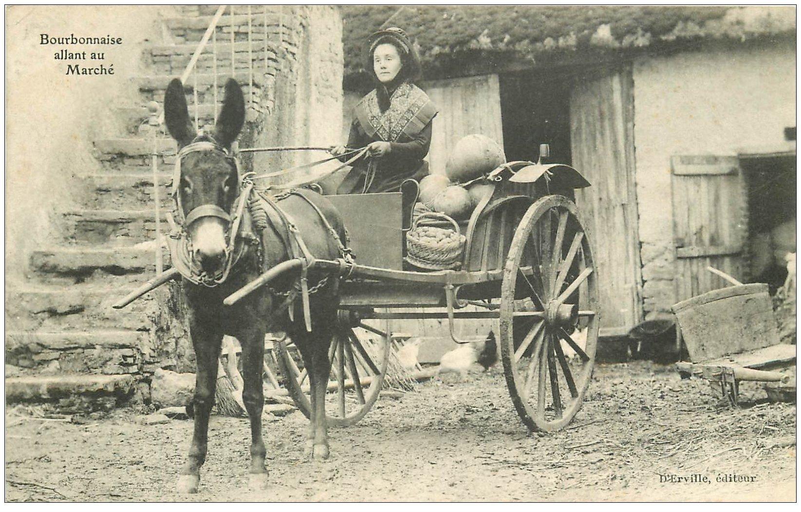 carte postale ancienne 03 BOURBONNAIS. Attelage pour aller au Marché 1902. Mule ou Ane