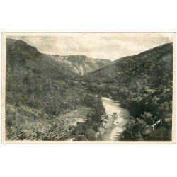 carte postale ancienne 34 RIEUTORD Vallée Route de Saint-Martial carte photo