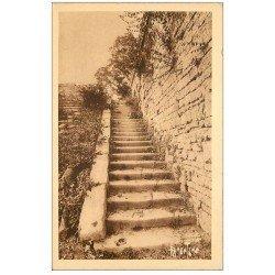 carte postale ancienne 17 BROUAGE. Escalier Louis XIV et Mancini. Aunis et Saintonge. Editions Bergevin