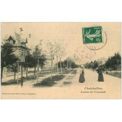 carte postale ancienne 17 CHATELAILLON. Avenue de Cronstadt 1908
