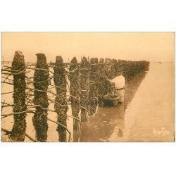 carte postale ancienne 17 CHATELAILLON. La Mytiliculture. Pêcheurs de Bouchots. Moules et Huîtres 1947