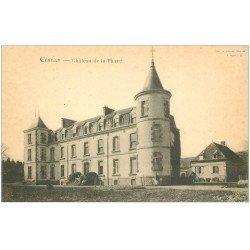 carte postale ancienne 03 CERILLY. Château de la Pierre