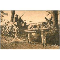 carte postale ancienne 17 ILE DE RE. Le Bois. L'âne en culotte. Attelage
