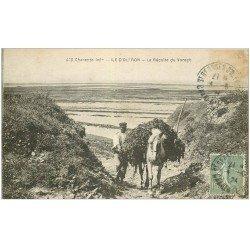 carte postale ancienne 17 ILE D'OLERON. La Récolte du Varech avec Cheval 1924
