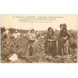 carte postale ancienne 17 ILE D'OLERON. Récolte des Artichauds. Métiers de la Campagne