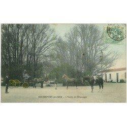 carte postale ancienne 17 ROCHEFORT-SUR-MER. L'Ecole de dressage de Chevaux. Siège chariot surélevé
