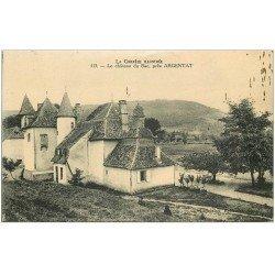 carte postale ancienne 19 ARGENTAT. Le Château du Bac