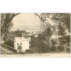 carte postale ancienne 20 AJACCIO. A travers les Oliviers du Casone 1918