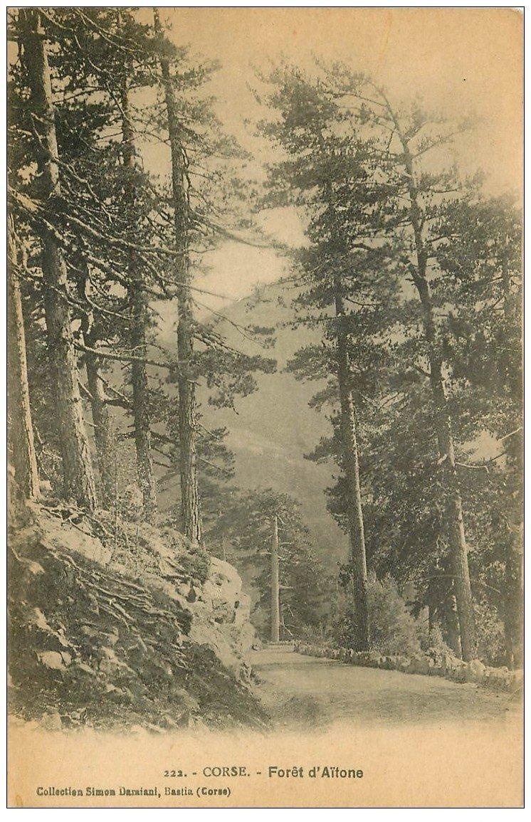 carte postale ancienne 20 CORSE. Forêt d'Aitone