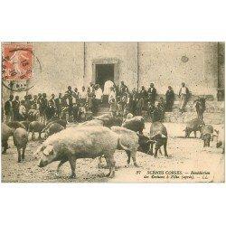 carte postale ancienne 20 ZILIA. La Bénédiction des Cochons 1910