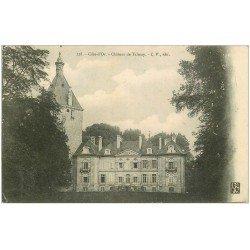 carte postale ancienne 21 CHATEAU DE TALMAY 1907