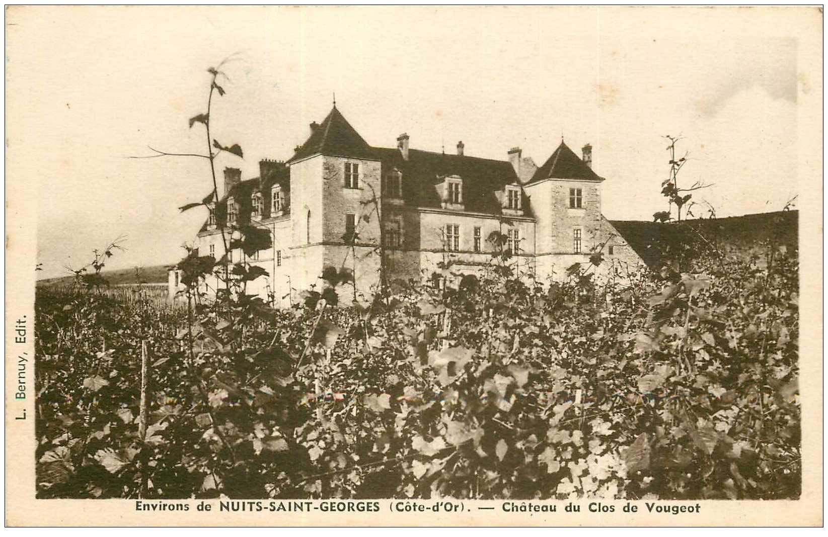 carte postale ancienne 21 CHATEAU DU CLOS VOUGEOT près de Nuits-Saint-Georges et ses Vignes et Voignobles