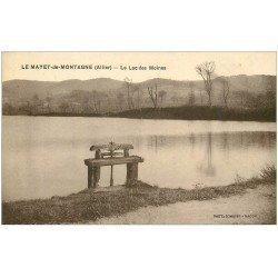 carte postale ancienne 03 LE MAYET-DE-MONTAGNE. Lac des Moines