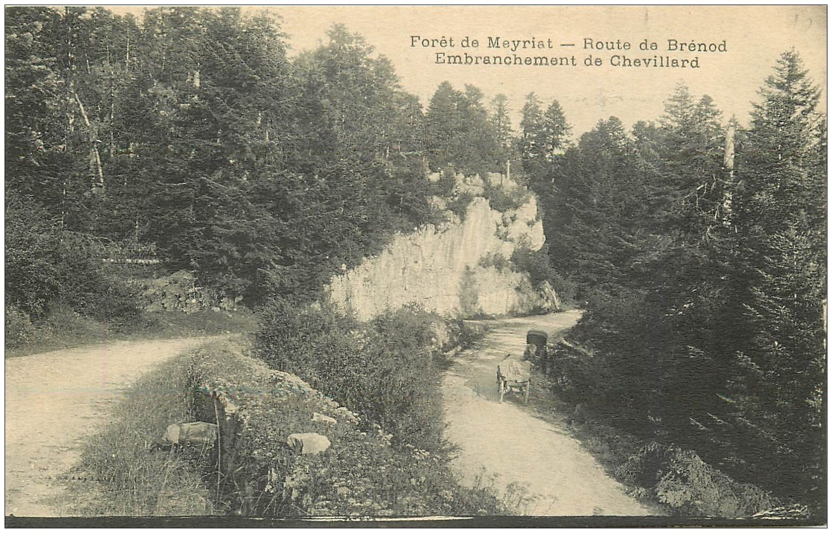 carte postale ancienne 01 Forêt de Meyriat. Route de Brénod. Embranchement Chevillard