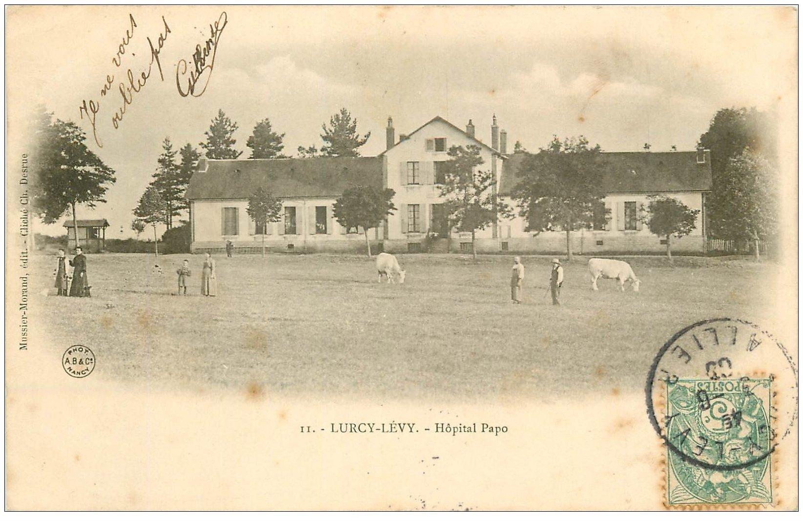 carte postale ancienne 03 LURCY LEVY. Hôpital Papo 1906 Paysans et Vaches