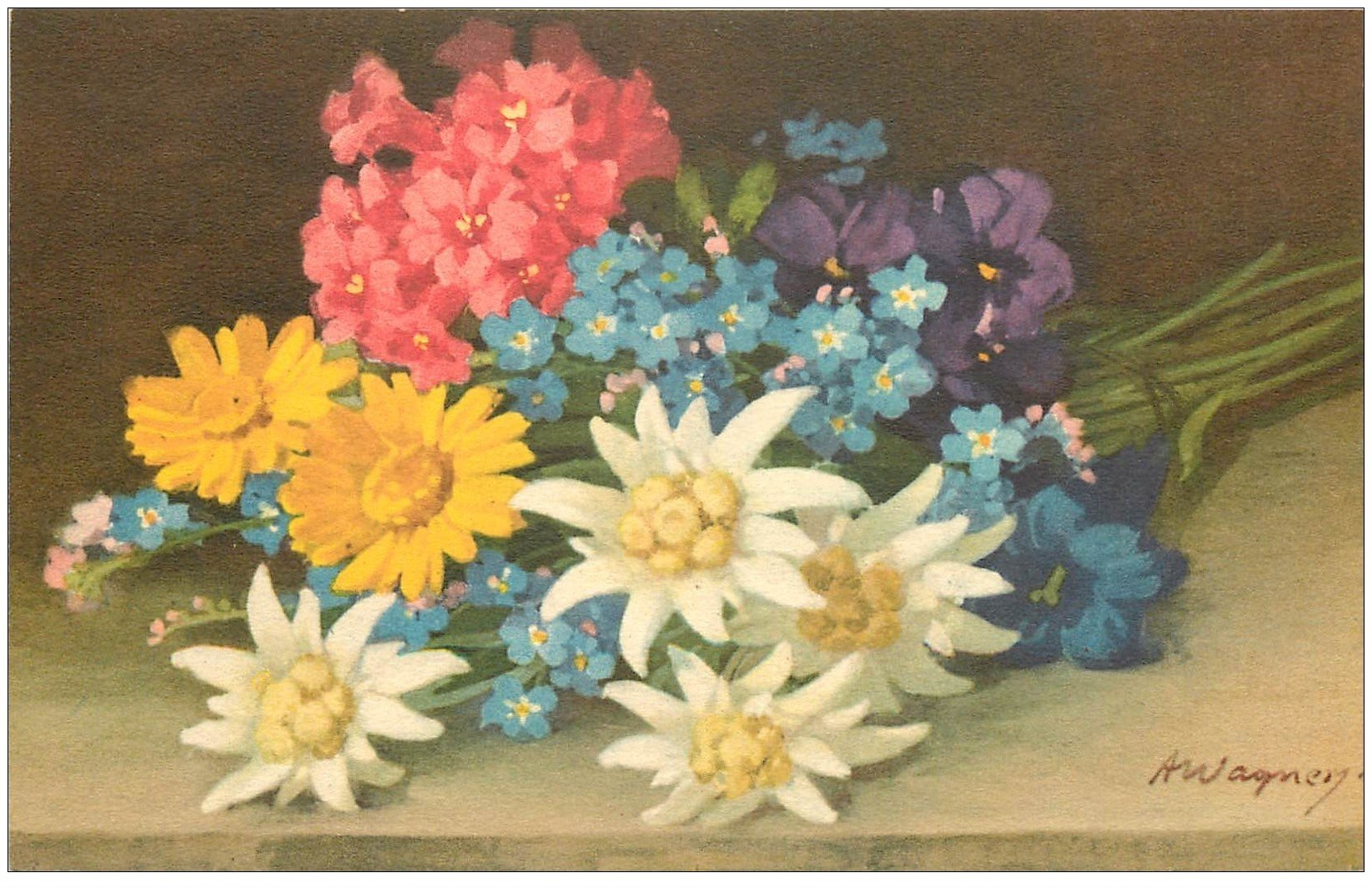 belle carte postale ancienne